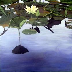 LILY POND - contemporary waterscape